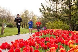 2017 tulip festival half marathon lehi ut 2017 active