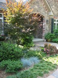 blue fescue state by state gardening
