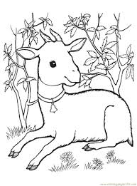goat coloring pages getcoloringpages com