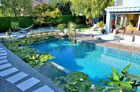 swimming pools what are natural swimming pools contemporist