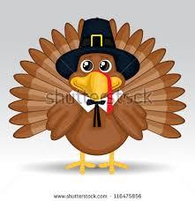free thanksgiving turkeys vector free vector stock