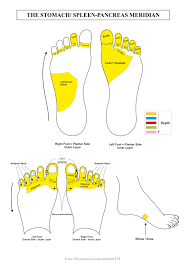 Foot Reflexology Map Reflexology For Muscle Pain