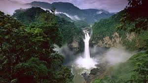 amazon basin amazon basin forest in south america thousand wonders