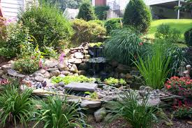 Pond Landscaping Ideas Landscaping Pond Landscaping Ideas Pictures