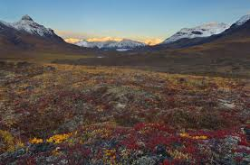 Alaska landscapes images Alaska landscape photo tours wrangell st elias national park jpg