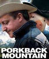 David Cameron Memes - aangirfan david cameron the new john major