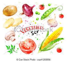 stock de ilustrationes de splashes pintura vegetales conjunto