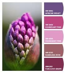 14 best color groups images on pinterest chips color schemes