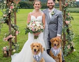 wedding attire dog wedding attire etsy