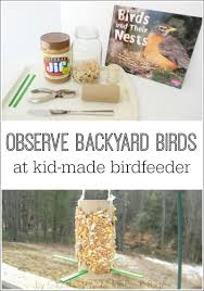 make a bird feeder and observe birds pre k pages