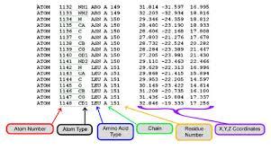 format file atom jmol training guide msoe center for biomolecular modeling