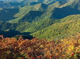 Garden Ridge Little Rock by Big Ivy Coleman Boundary Hiking Waterfalls Big Trees