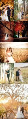 wedding ideas for fall fall wedding photos jpg
