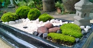 Zen Rock Garden by Brown Stone Mini Zen Garden Diy Mini Zen Garden Pinterest