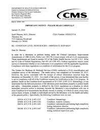 senior auditor cover letter medicare auditor cover letter