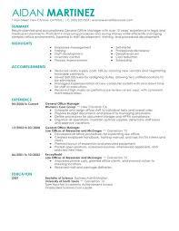 Hotel Manager Sample Resume by General Manager Resume Haadyaooverbayresort Com