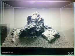 Substrate Aquascape 41 Best Aquarium Images On Pinterest Aquarium Ideas Aquascaping