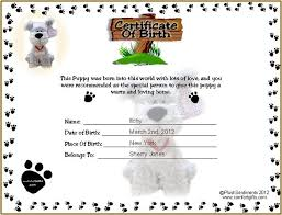template for birth certificate 15 birth certificate templates