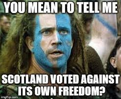 Scottish Memes - scotland says no to independence jokes memes and world reaction