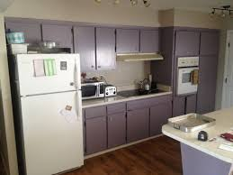 purple cabinets kitchen purple kitchen cabinets good looking purple kitchen idea with