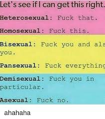 Bisexual Memes - let s see iflcan get this right heterosexual fuck that homosexual