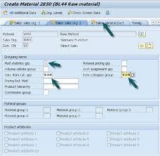 Sap Material Master Tables by Sap Sd Create Mm For Sales View
