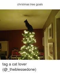 Cat Christmas Tree Meme - 25 best memes about cat lover cat lover memes