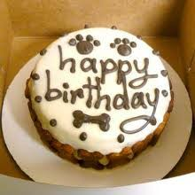 doggy birthday cake ideas hercules the french bulldog