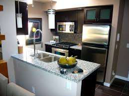 Kitchen Design Must Haves Apartments Good Looking Small Condo Kitchen Design Rehab Studio