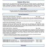 Open Office Resume Template Resume Template For Openoffice Openoffice Resume Templates Free