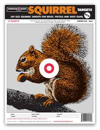 amazon com life size squirrel paper hunting shooting targets