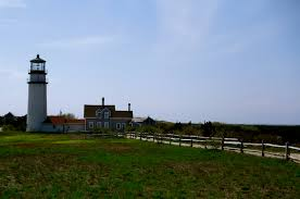 wellfleet ma where the oysters are wicked good