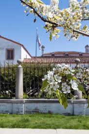 May at the Villa Terrace Decorative Arts Museum • Rose Clearfield