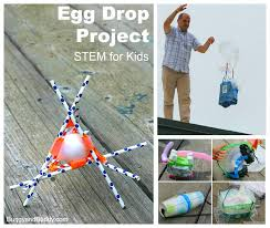 Challenge Drop Stem For Egg Drop Project Buggy And Buddy