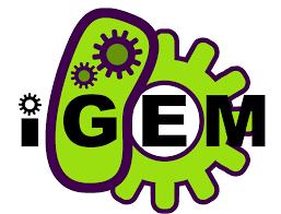 thanksgiving animated gif thanksgiving logo gif gifs show more gifs