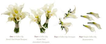 Calla Lily Flower Delivery - packages royer u0027s flowers and gifts flowers plants and gifts