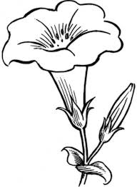 flower printable coloring sheets flower coloring pages