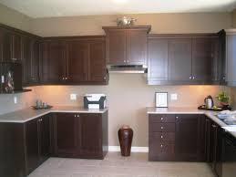 impressive espresso kitchen cabinets ideas u2014 luxury homes