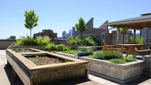 rooftop garden designs and ideas zen of zada