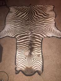 genuine a grade felted african burchell u0027s zebra skin rug over 18