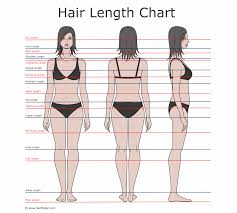 how to describe hair lengths hair length chart and the