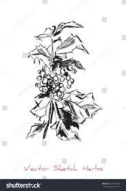 vector black white sketch tree branch stock vector 318112520