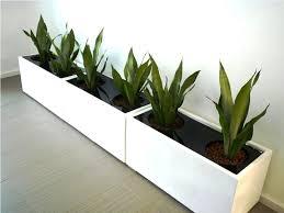 modern indoor planters ideas home decor inspirations