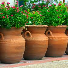 pots large outdoor pot plants images home pot house pot large