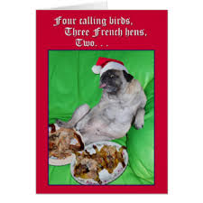 dog christmas cards dog christmas cards invitations greeting photo cards