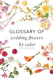wedding flowers prices a glossary of wedding flowers by color brides grand