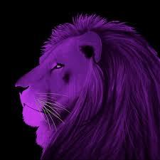 violet meaning violet color psychology