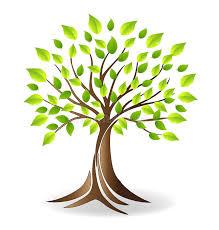 ecology family tree logo stock vector illustration of biology