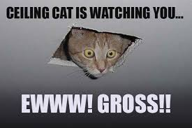 Its Friday Gross Meme - 20 best ewww memes you just can t unsee sayingimages com