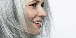 images of grey hair in transisition how to go gray tips for transitioning to gray hair